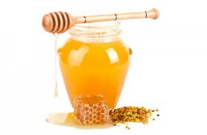 Le miel, un bactéricide naturel